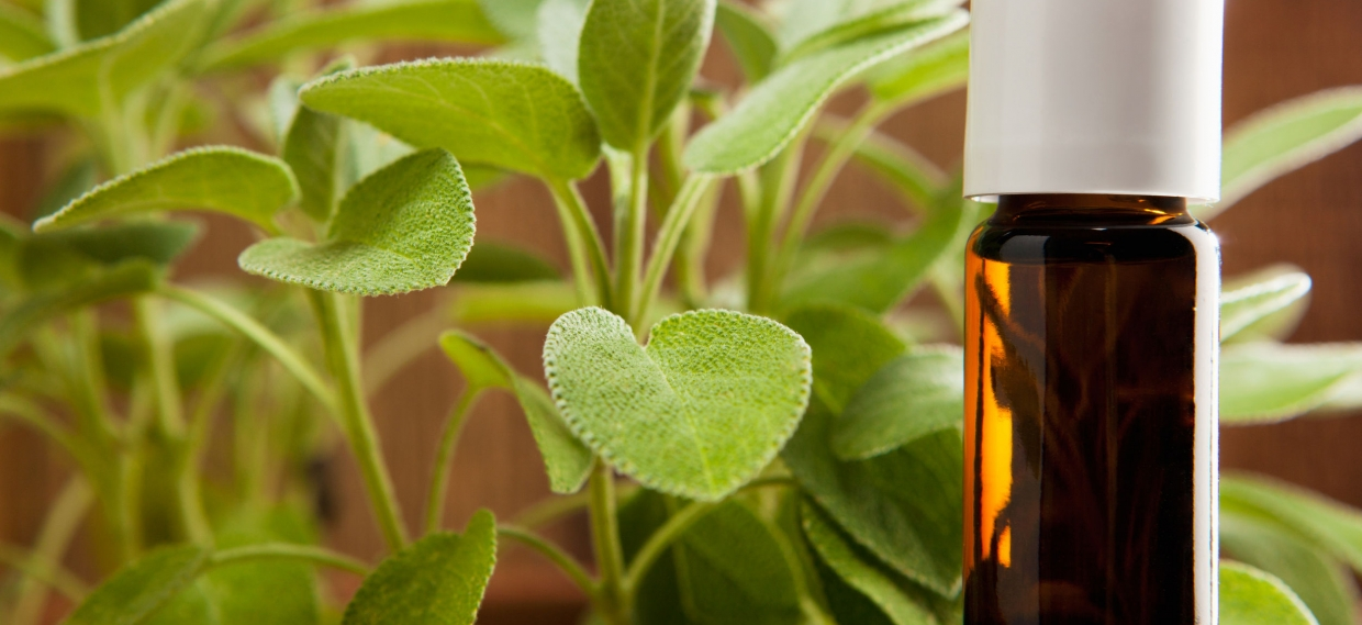 """Herbs, Extracts, Essential Oils…Oh My! Examining the """"Hormonal Effects"""" of Essential Oils – Highlighting Sage Oil: Part II"""