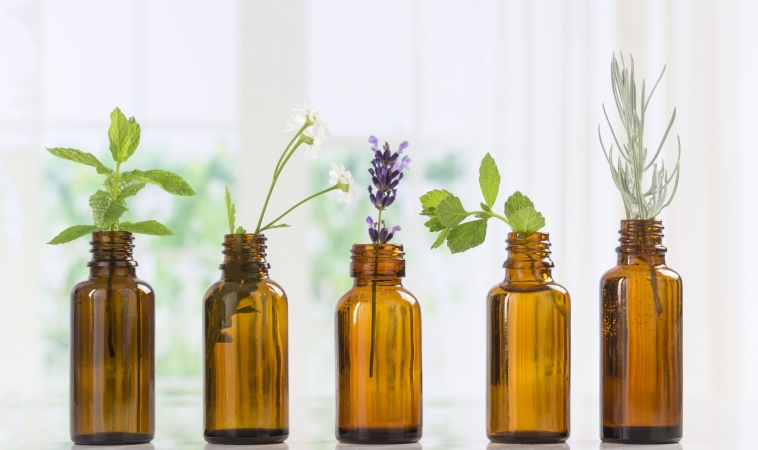 """Examining the """"Hormonal Effects"""" of Essential Oils: An Introduction Highlighting Sage Oil: Part I"""