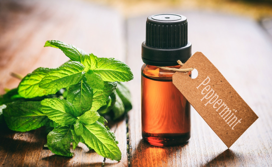 Peppermint for Dysphagia