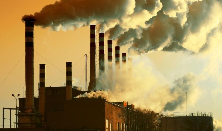 1 in 4 People Die Due to Air Pollution