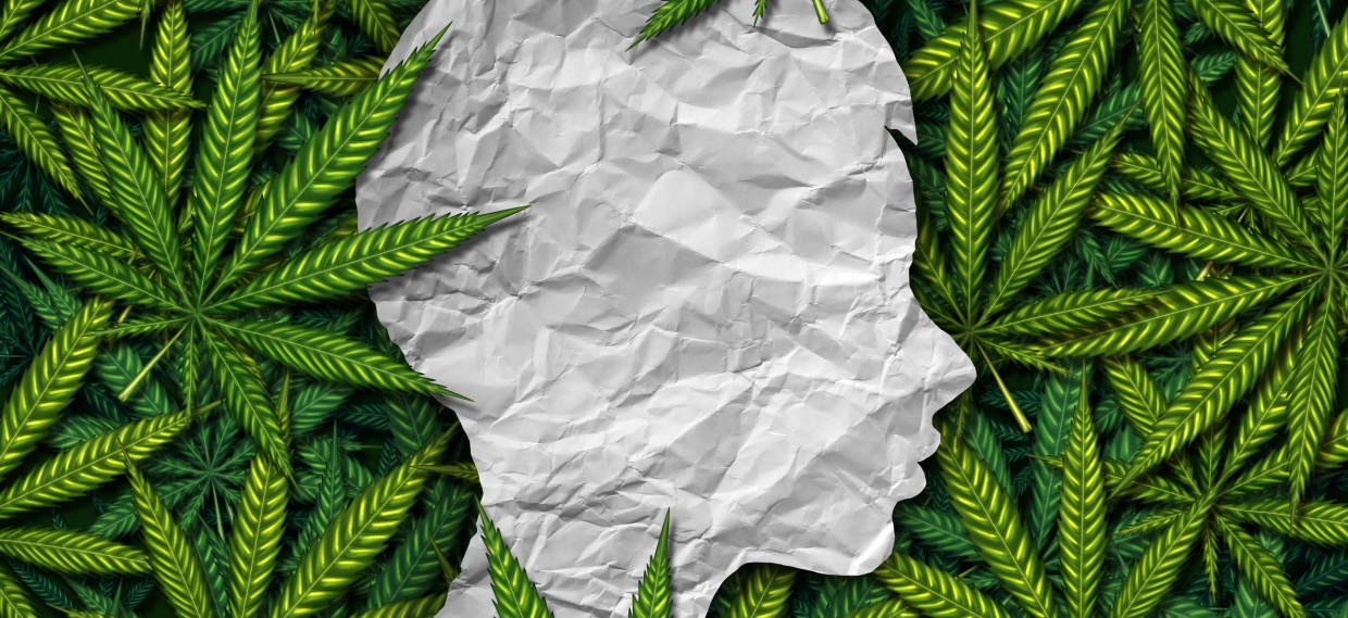 Study Finds Children of Cannabis Users Start Using Earlier
