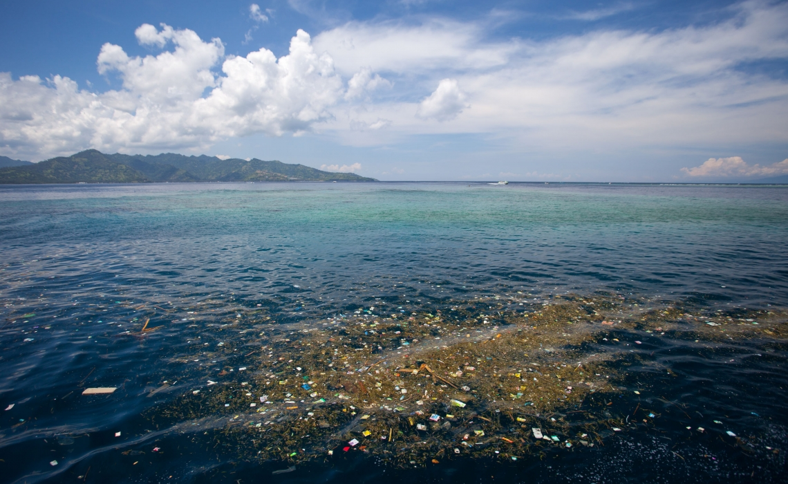 Health Risks of Microplastic Particles