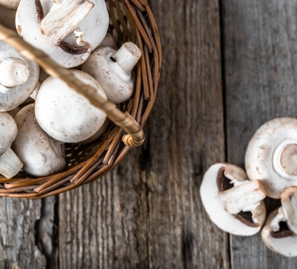 White Button Mushrooms Could Help Improve Glucose Regulation