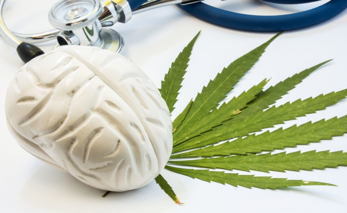 Differences in brain systems for habitual behavior distinguish heavy cannabis users