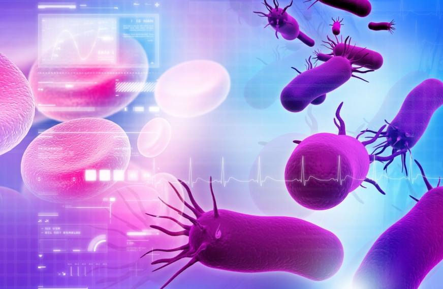 Our Belly Bugs May Produce Helpful or Harmful Metabolites to Modulate Cancer