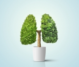 Lung Cancer Risk Drops Significantly After Five Years