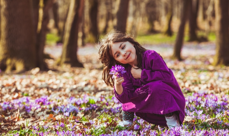 Saffron as Effective as Ritalin in Treating ADHD