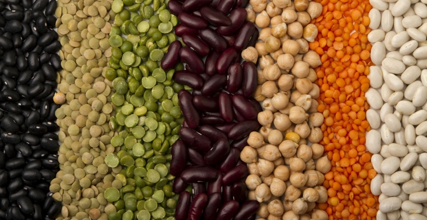 Certain Non-oil Seeds Can Help with Weight Management