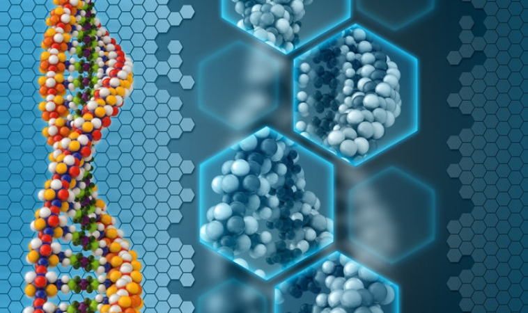 RNA Can be Written into DNA