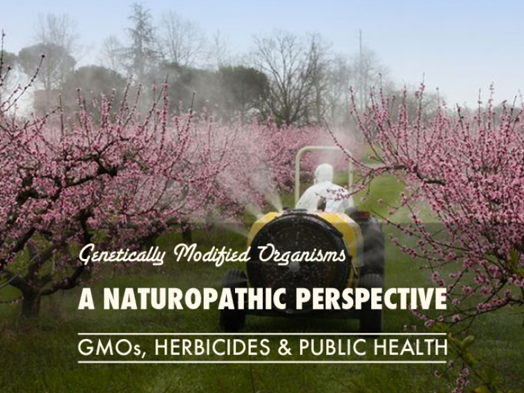 A Naturopathic Perpective on GMOs, Herbicides and Public Health