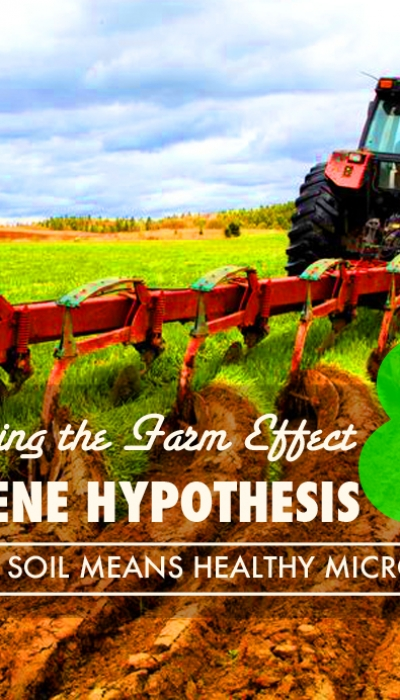 Balancing the Farm Effect and the Hygiene Hypothesis