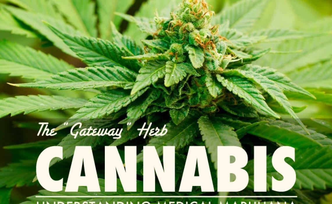 """Cannabis:  The """"Gateway"""" Herb"""