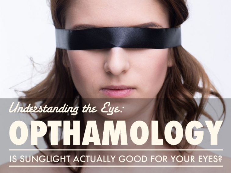 Understanding the Eye