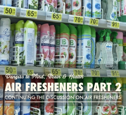 Air Fresheners Part Two: Do we Even Want Them?