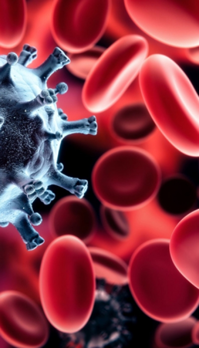 Adults Have Risky Autoreactive Immune Cells
