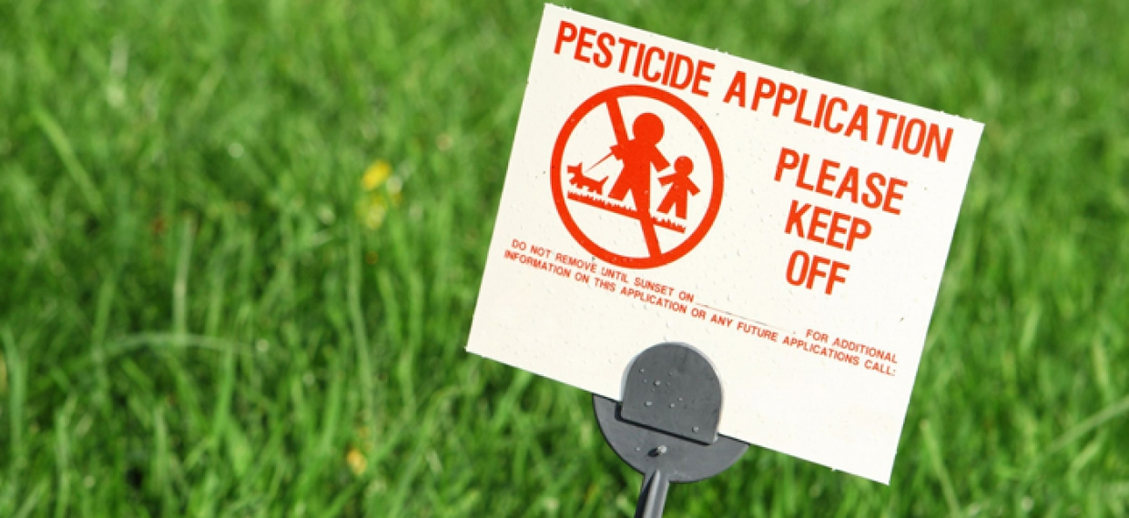 Pesticide Exposure Contributes to Heightened Risk of Heart Disease