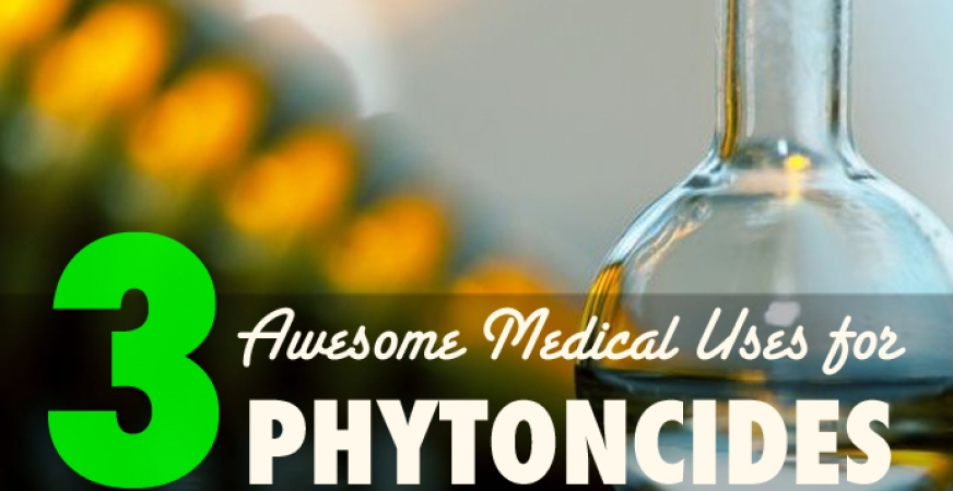 3 Medical Uses for Essential Oils & Phytoncides