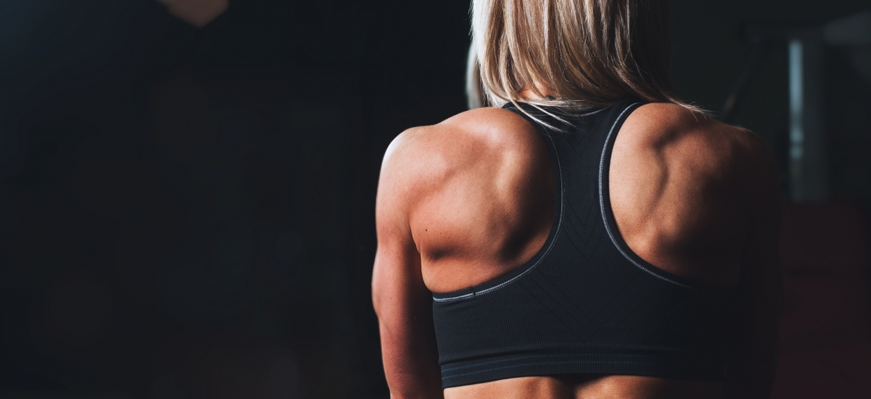 Muscle Mass is Critical to Health