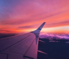 5 Essential Items for Healthy Travel