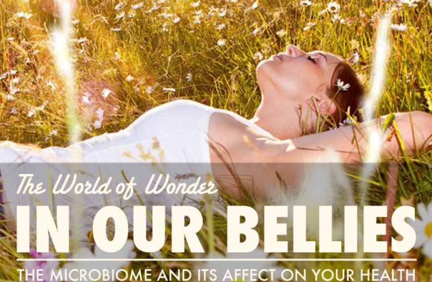 The World of Wonder In Our Bellies